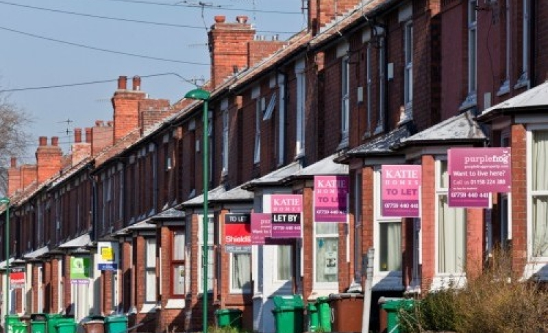 Will council scheme to improve rented homes discourage investors?